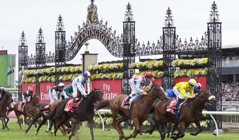 La corsa dei cavalli che ferma un'intera nazione Image